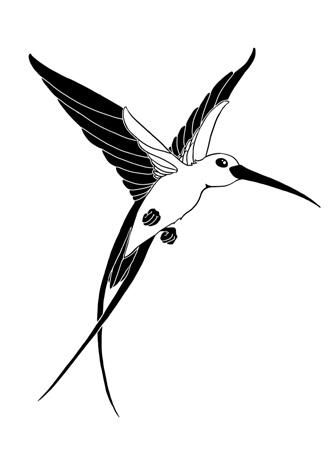 Эскиз колибри черно белая тату 85